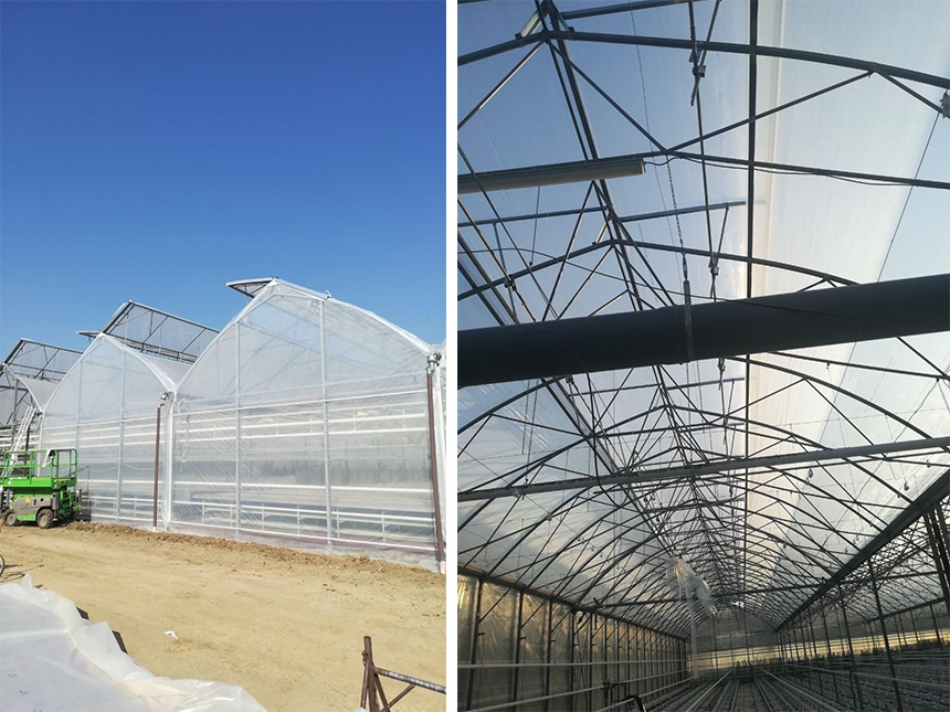 Greenhouses and glasshouse constructions project - Slovakia Zelstar Schetelig