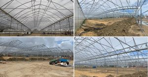 Greenhouses and glasshouse constructions project - Agrikol building greenhouse in Tunisia for Rainbow – Horty Daily magazine